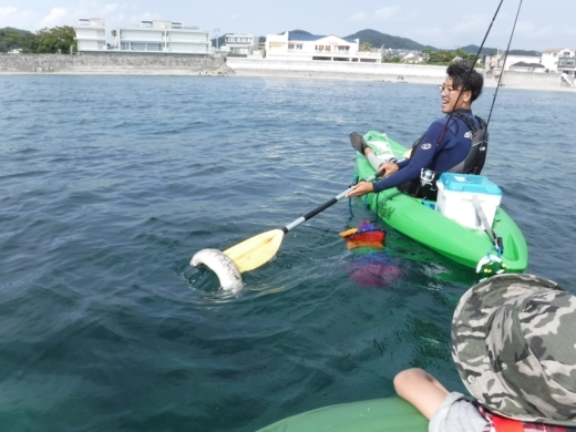 葉山の釣り (59)