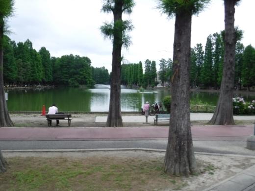 別所沼公園雑魚釣り (1)