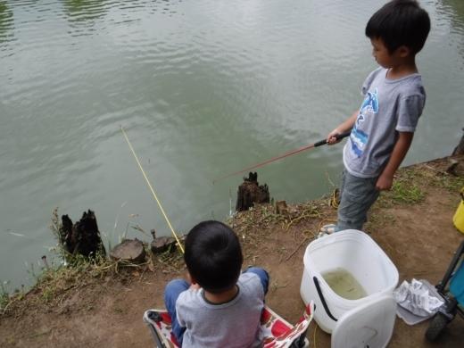 別所沼公園雑魚釣り (12)