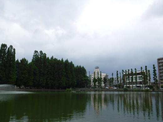別所沼公園雑魚釣り (18)
