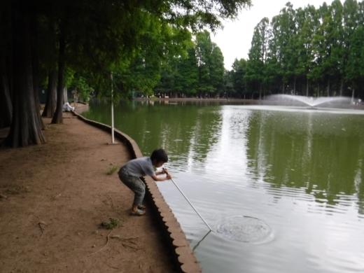別所沼公園雑魚釣り (23)