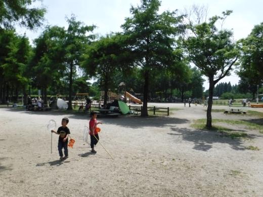 みさと公園 (29)