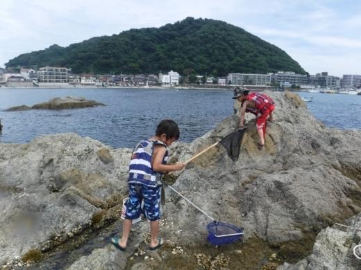 森戸海岸2 (31)