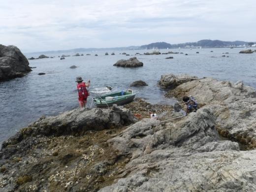 森戸海岸2 (38)