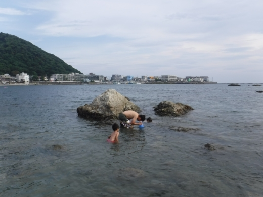 森戸海岸2 (48)