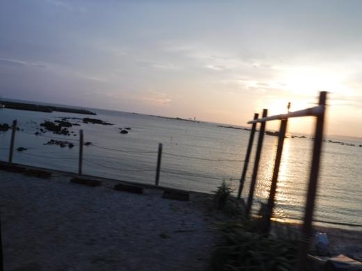 森戸海岸2 (54)
