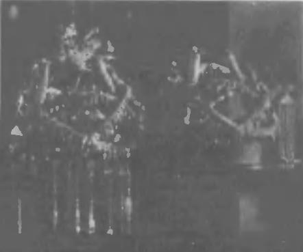 ジョホール王冠1