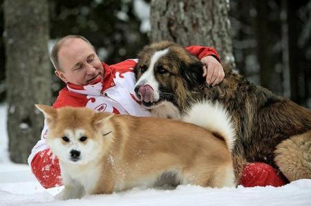 プーチン&ゆめ