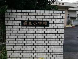 IMG_7397.jpg