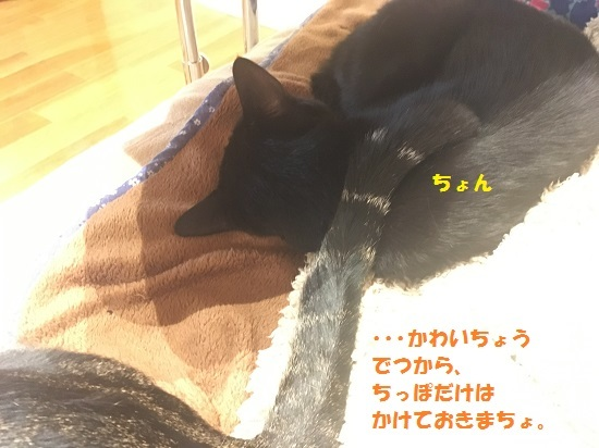 20170514163523f09.jpg
