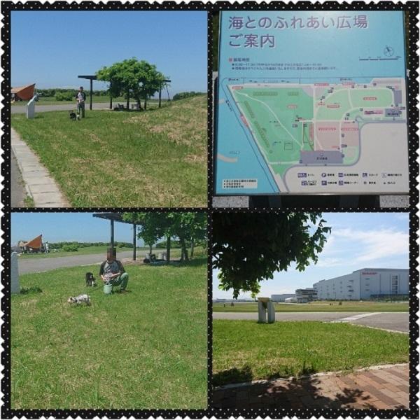 PhotoGrid_1494114555804.jpg