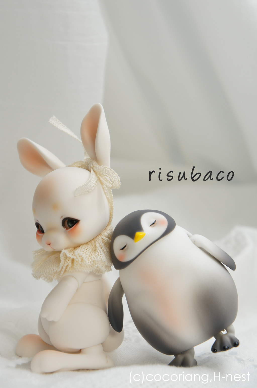 risubaco02.jpg