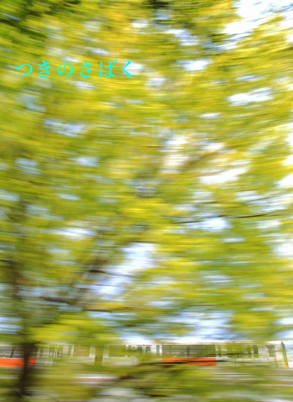 IMG_8356to_1.jpg