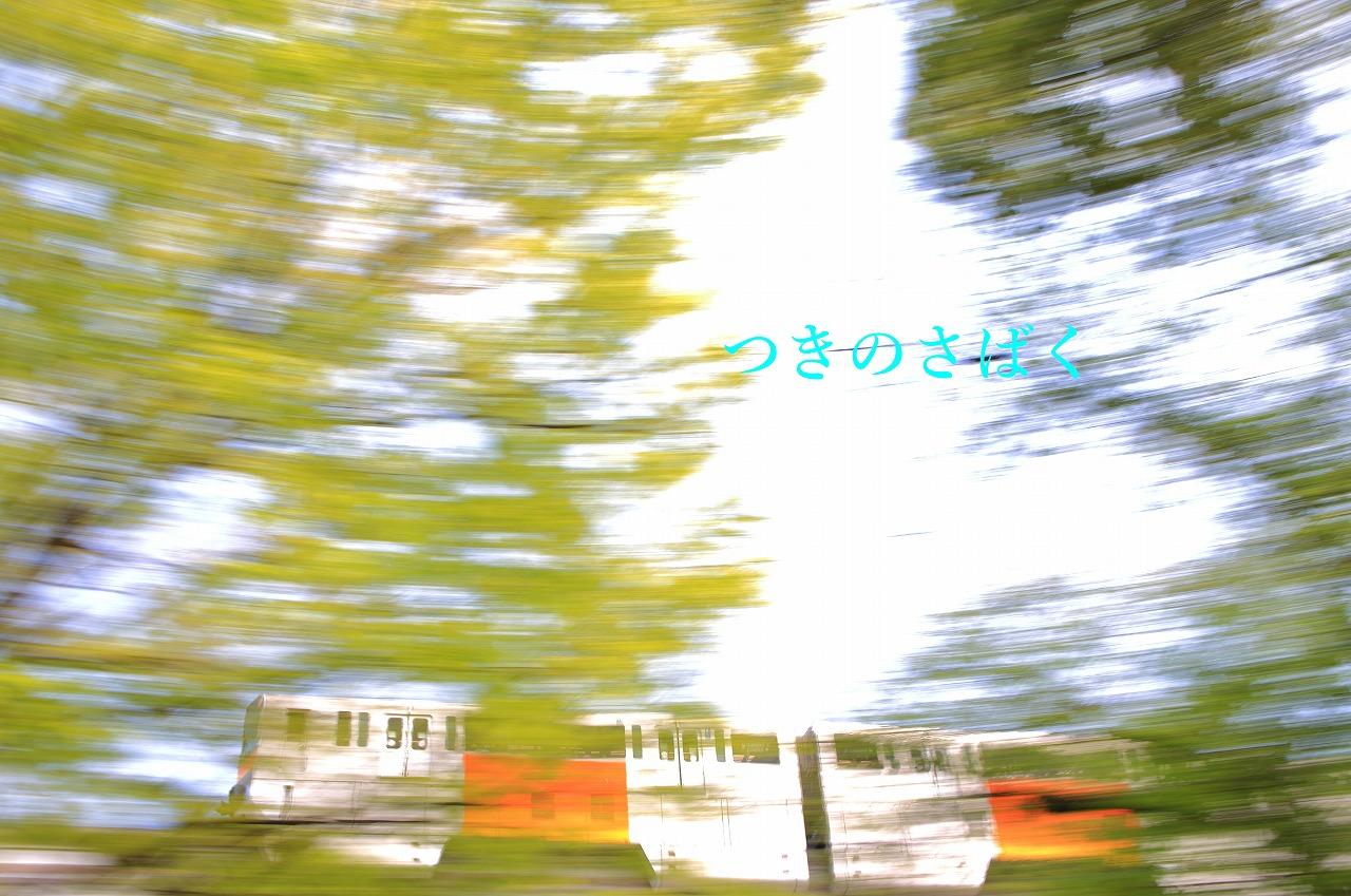 IMG_8366fauto_1.jpg