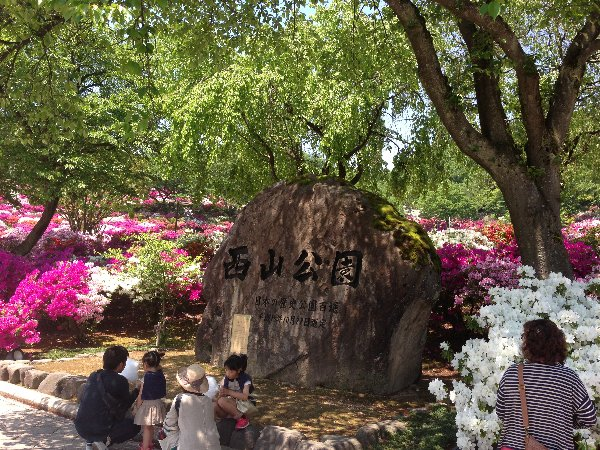 tsutsuji-takefu-005.jpg