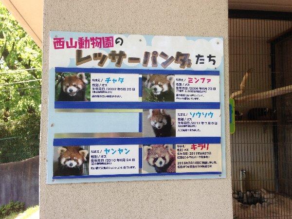 tsutsuji-takefu-037.jpg