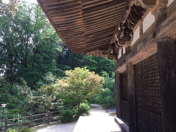 zensuiji-konan-021.jpg