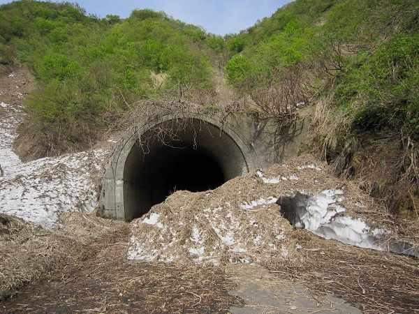 kyuushiroyamatunnel08.jpg
