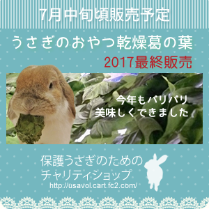 kuzuno-ha2017.png
