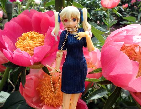 29_05_17_ibaragi_flower_1.jpg