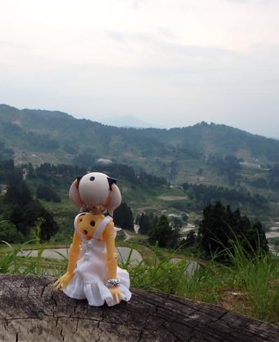29_06_08_8_tuginohi.jpg