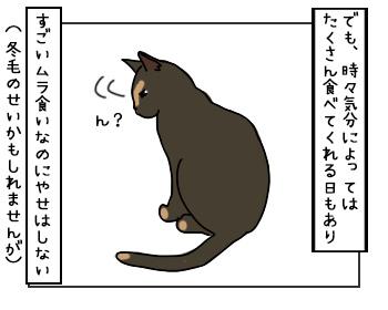 01062017_cat2mini.jpg