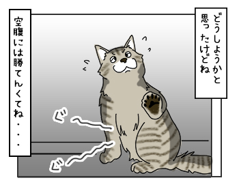 02062017_cat1mini.jpg
