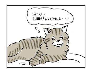 03062017_cat2mini.jpg