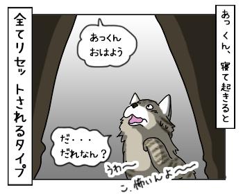 03062017_cat5mini.jpg