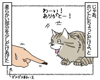 03072017_cat2mini.jpg