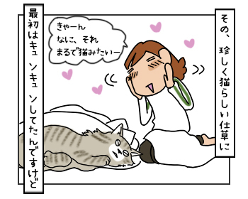 07062017_cat3mini.jpg