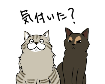 07072017_cat1mini.jpg