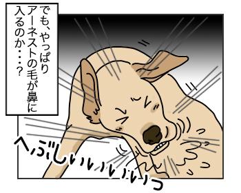 10072017_cat2mini.jpg