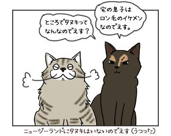 12062017_cat2mini.jpg