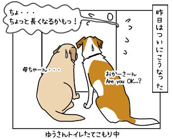 13062017_cat3mini.jpg