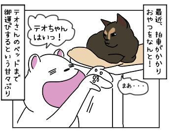 14062017_cat2mini.jpg