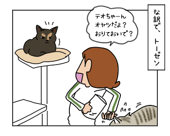 14062017_cat3mini.jpg