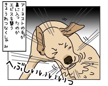 15052017_cat3mini.jpg