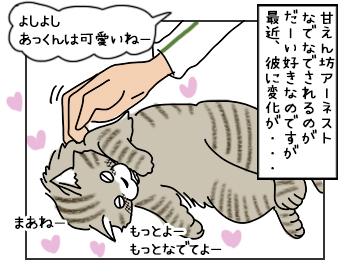 16052017_cat1mini.jpg