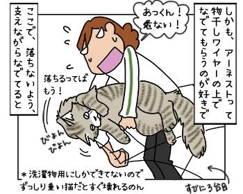 16052017_cat3mini.jpg