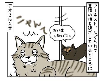 17052017_cat1mini.jpg