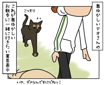 18052017_cat2mini.jpg