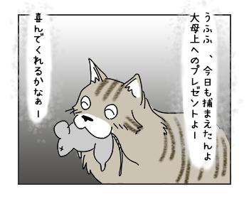 200612017_cat1mini.jpg