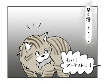 20062017_cat2mini.jpg