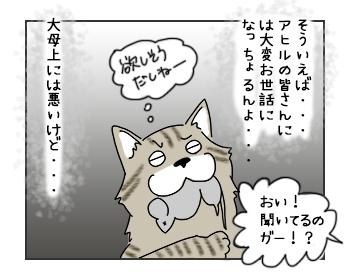 20062017_cat4mini.jpg