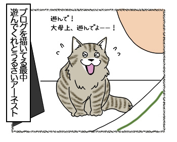 23062017_cat1mini.jpg