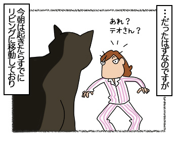 29062017_cat3mini.jpg