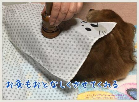 2017-06-01 お灸