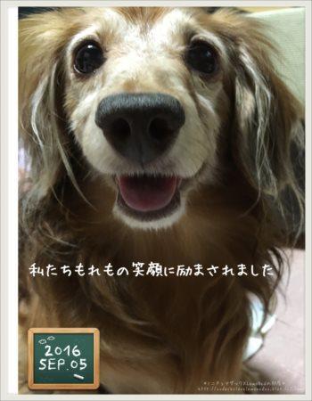 2016.9.5 れもの笑顔