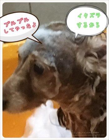 2017/07/06 お風呂アワアワ3